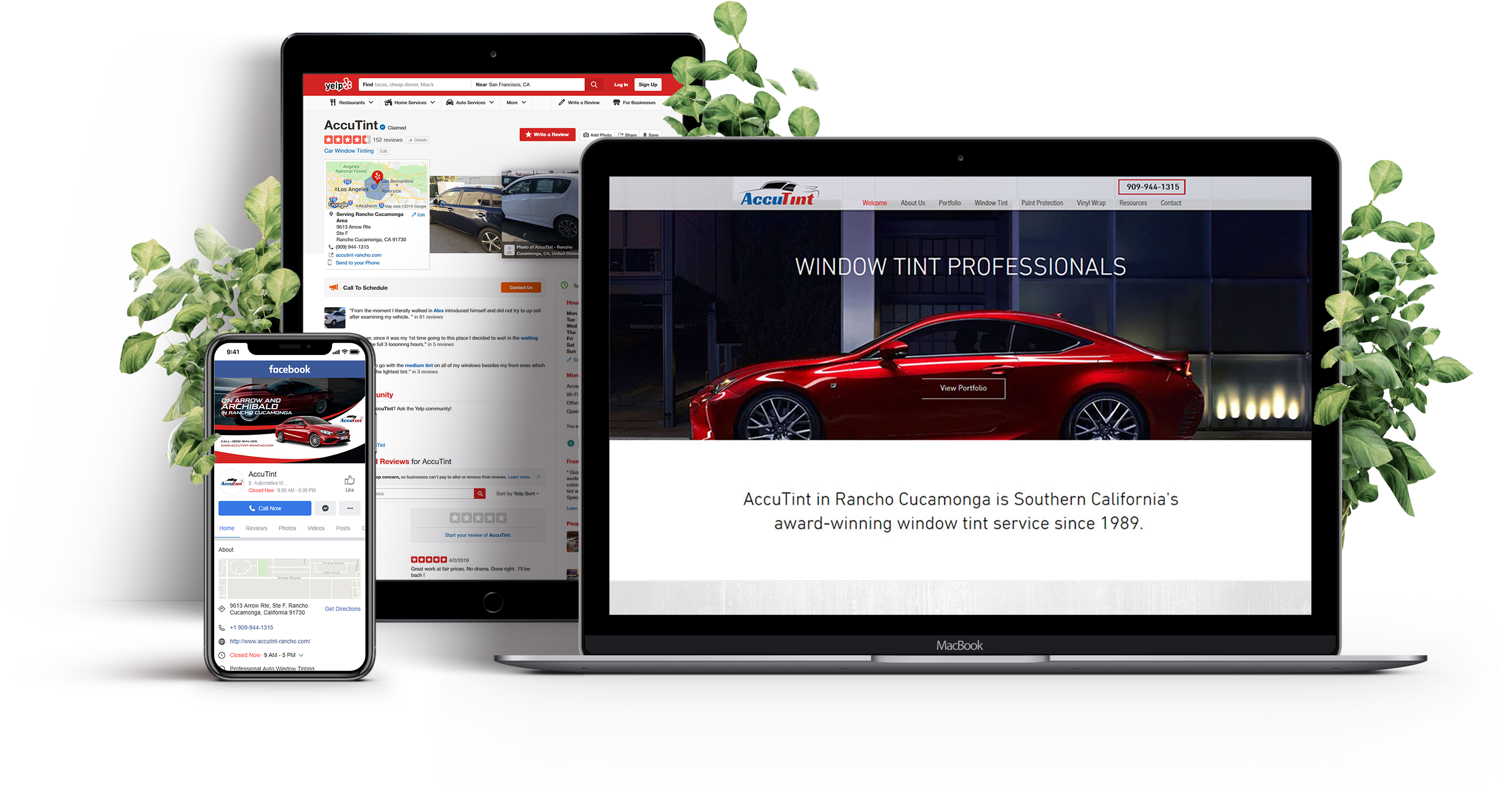 Accutint Rancho Cucamonga Web Design